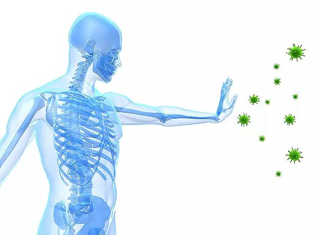 What You Can Do To Boost Your Immune System
